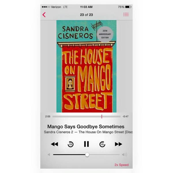 love in the kitchen in the house on mango street by sandra cisneros and the joy luck club by amy tan Bloom's guides sandra cisneros's the house on mango street currently available the adventures of huckleberry the joy luck club finn the kite runner.