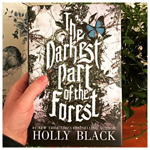 holly black the darkest part of the forest