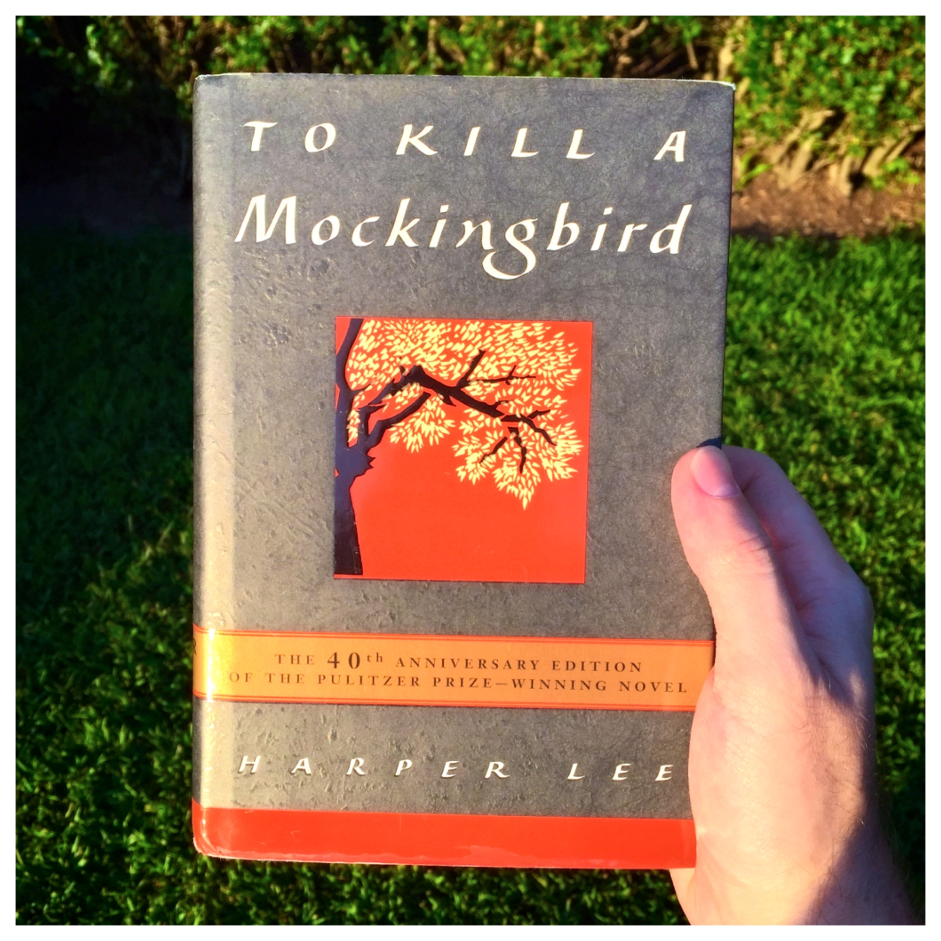 the three themes in the novel to kill a mockingbird by harper lee